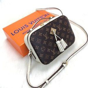 Louis Vuitton Saintonge 22x16x8cm